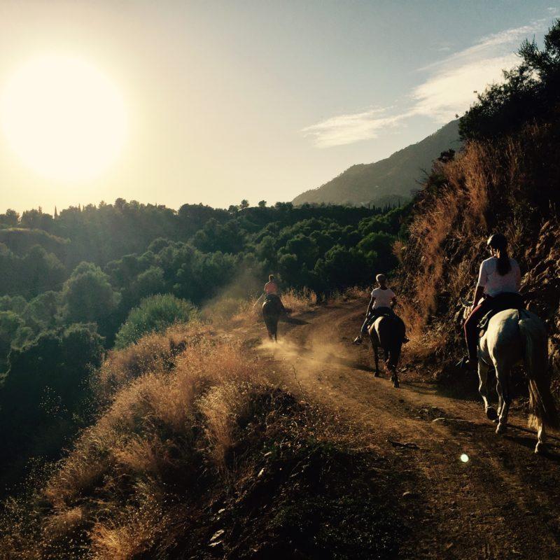 Andalusien Wanderreiten Pferde Ausreiten Rancho La Paz