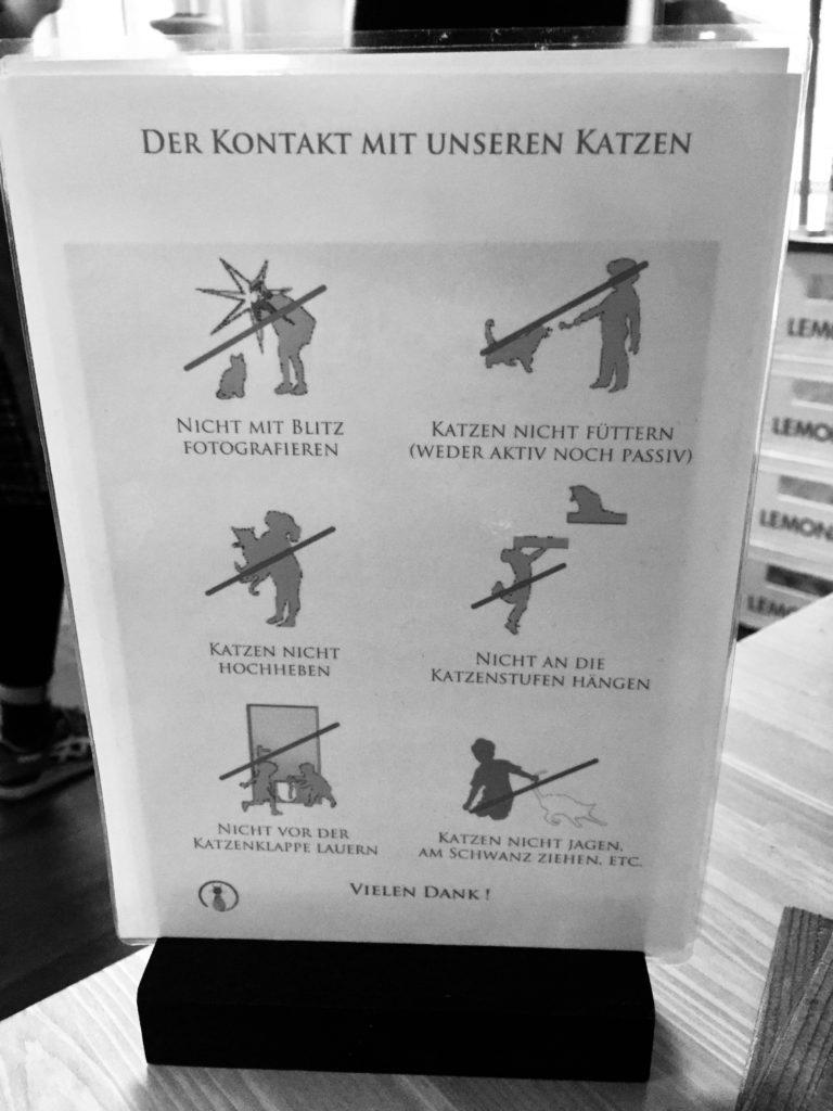 Katzencafe Hamburg Regeln