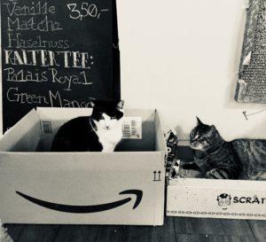 Katzencafe Hamburg Katze schwarz weiß