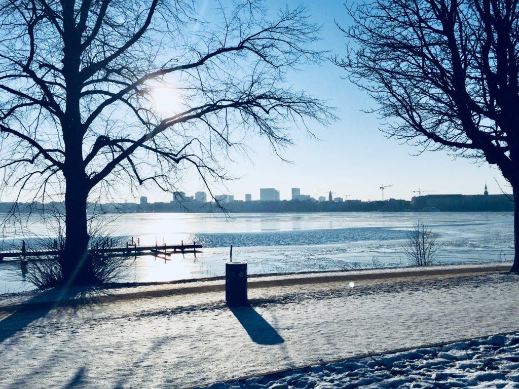 Winter Eis Eisscholle Hamburg Alster Frost