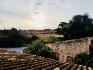 Malle Mallorca Palma Insel Spanien Urlaub