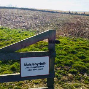 Herausforderung Maislabyrinth