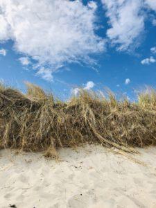 Heimreise Deutschland Deutschlandtour Urlaub daheim Strand Ostsee Sommer Natur
