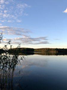 Heimreise Deutschland Deutschlandtour Urlaub daheim Sommer Natur See Uckermark